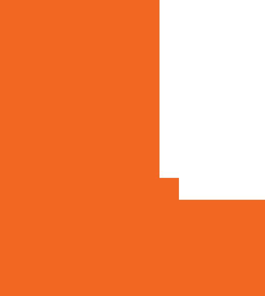 tint orange